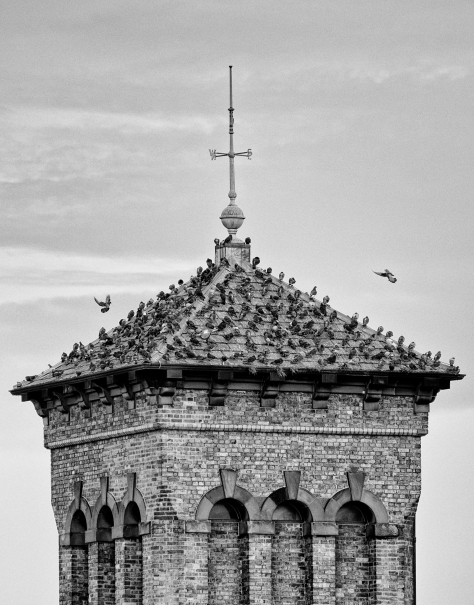 Pigeon Tower, Leith. Photo by and copyright of Lynn Henni.